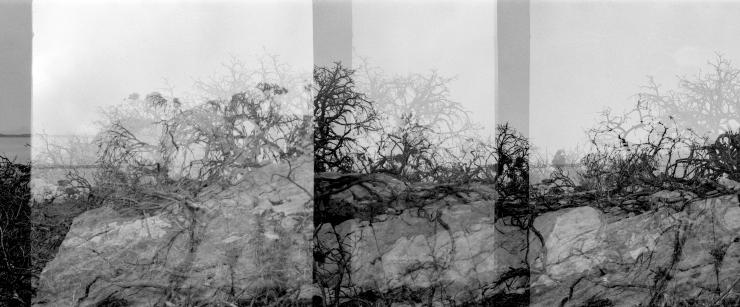 KodakAutograph2Rocks