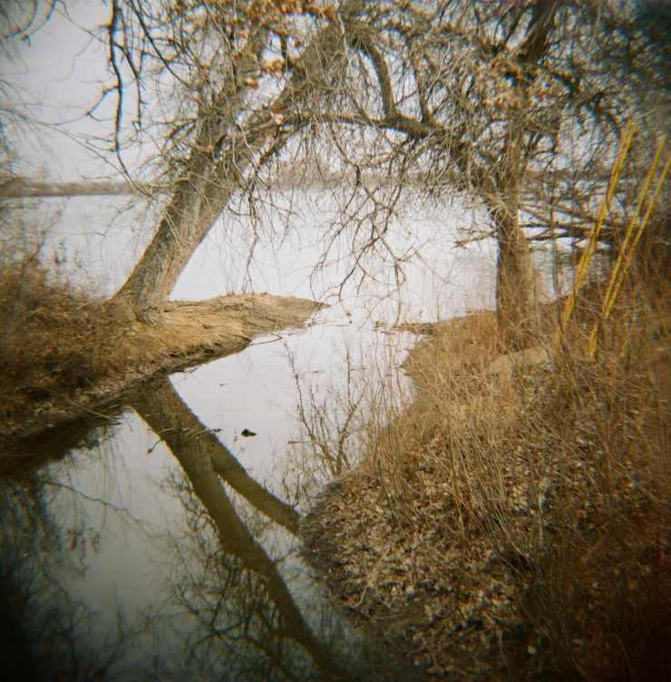 Diana_Reflections_April